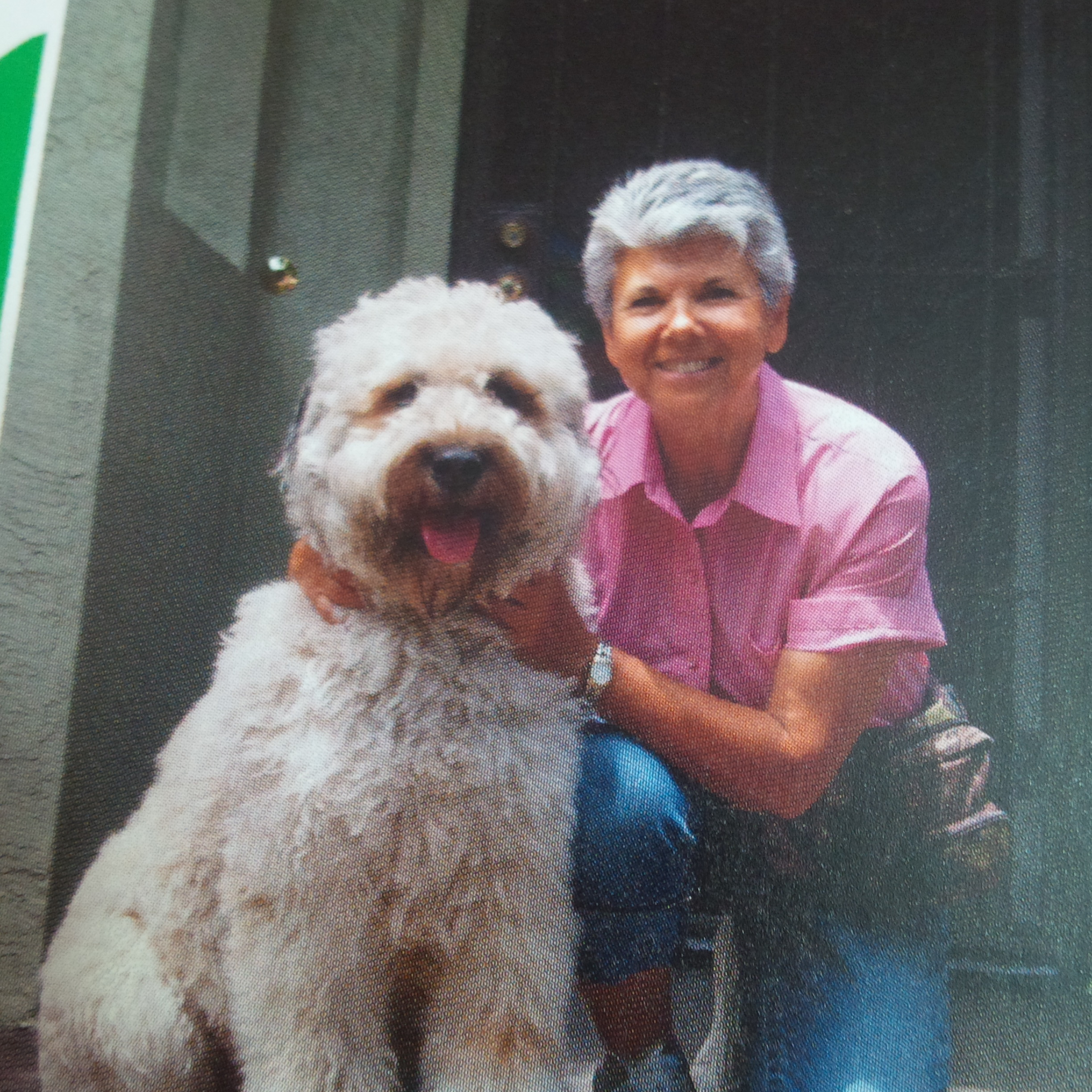Meet Sari Reis Of Mission Valley Pet Sitting Services